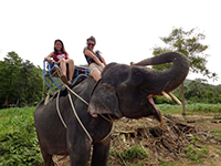 Lynette riding an elephant